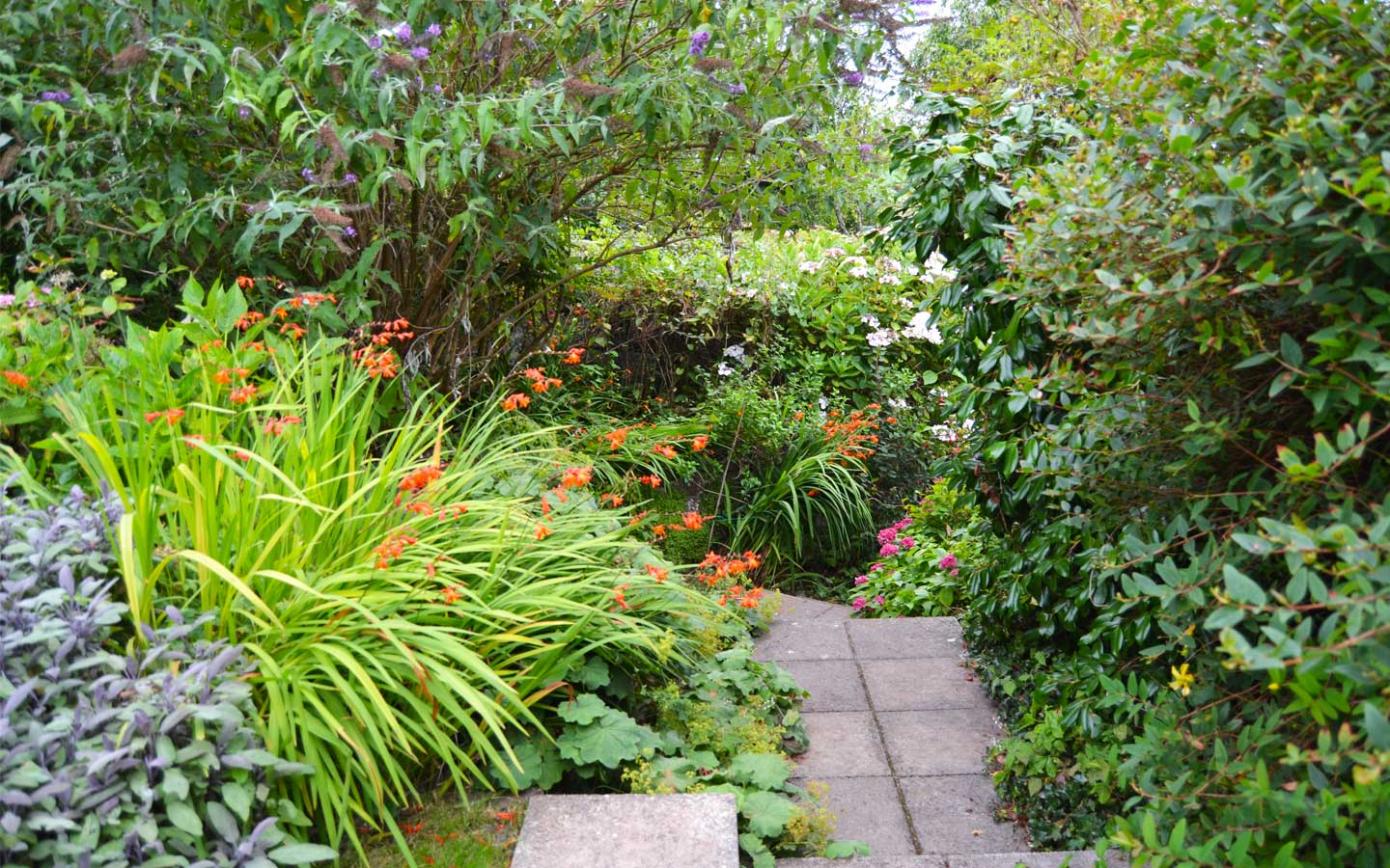 cottage to rent with garden pembrokeshire